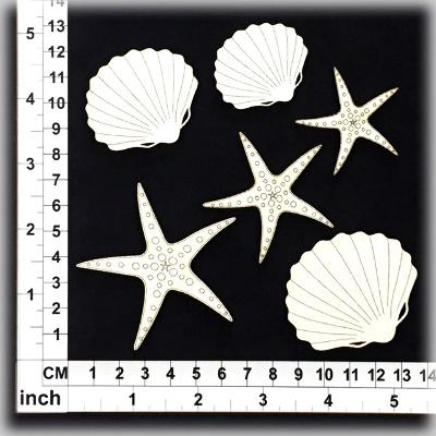 cb6062-shells-02